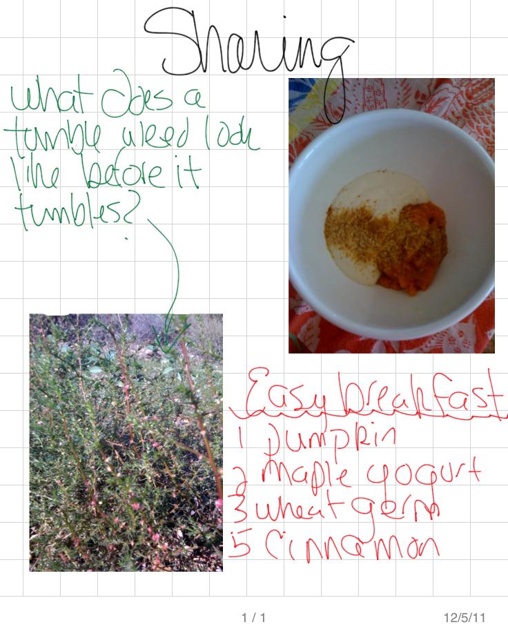 Tumbleweed P1